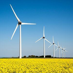 Which suppliers offer green energy in the UK?
